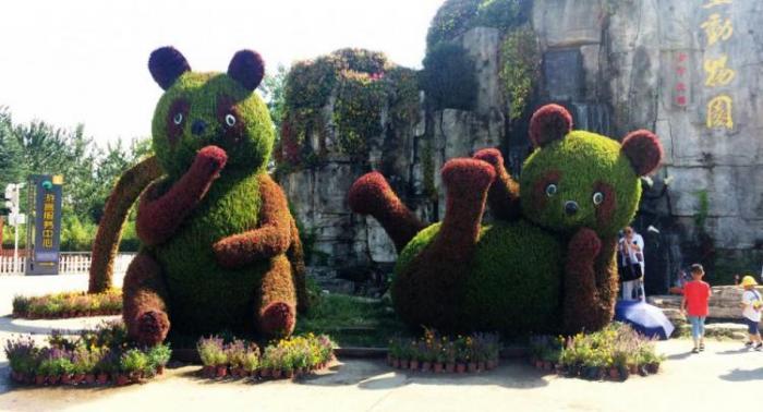 【绿雕】动物园绿雕制作方案
