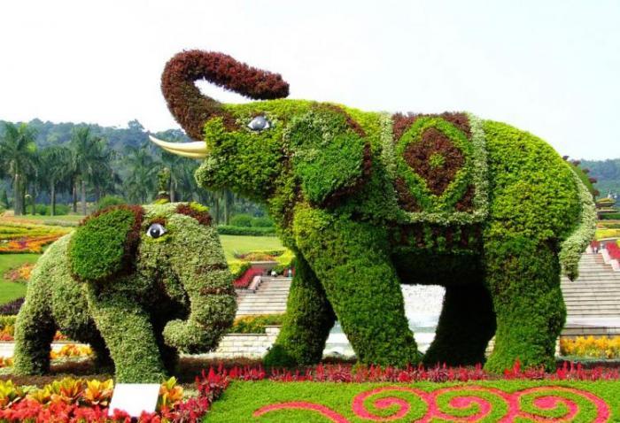 【植物綠雕】景區廣場綠雕展示