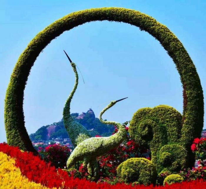 【植物綠雕】景區綠雕展示